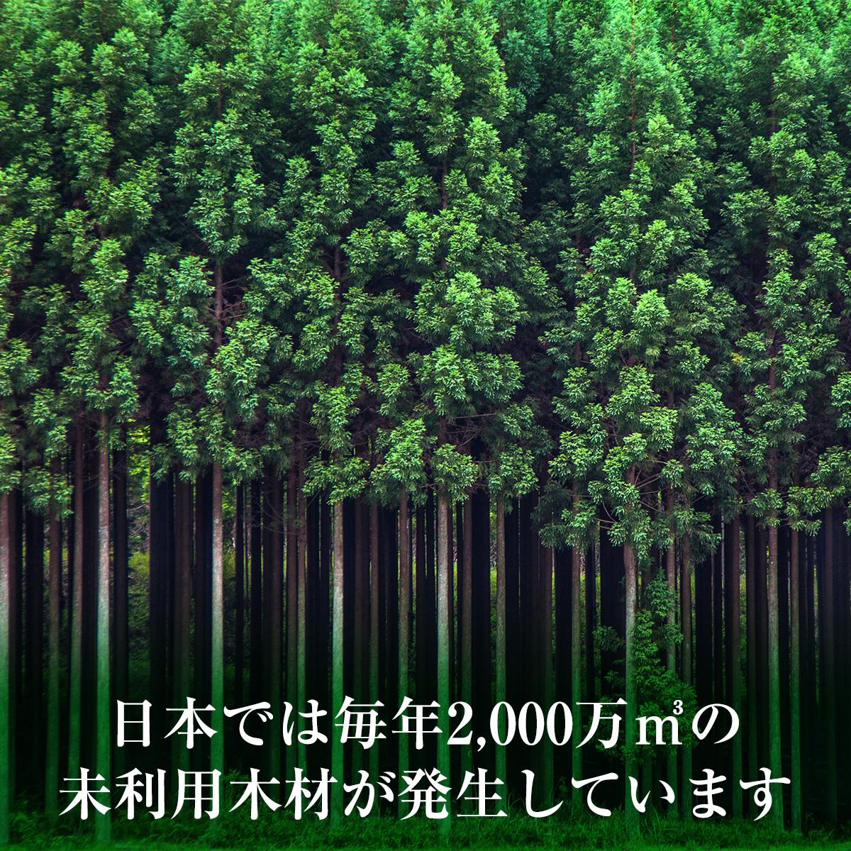 日本では毎年2000万立方メートルの未利用木材が発生しています