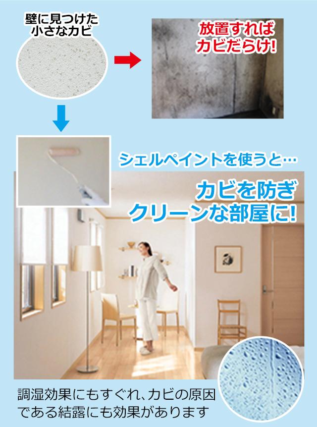 壁に見つけた小さなカビ、放置すればカビだらけ!シェルペイントを使うと、カビを防ぎクリーンな部屋に!調湿効果にもすぐれ、カビの原因である結露にも効果があります
